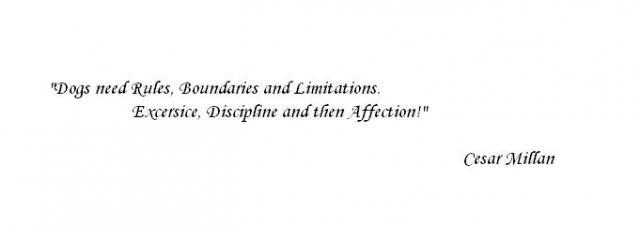quote4.JPG